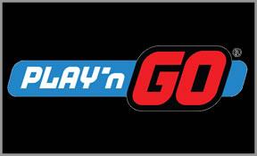 「ソフトウェア Playn'Go」の画像検索結果